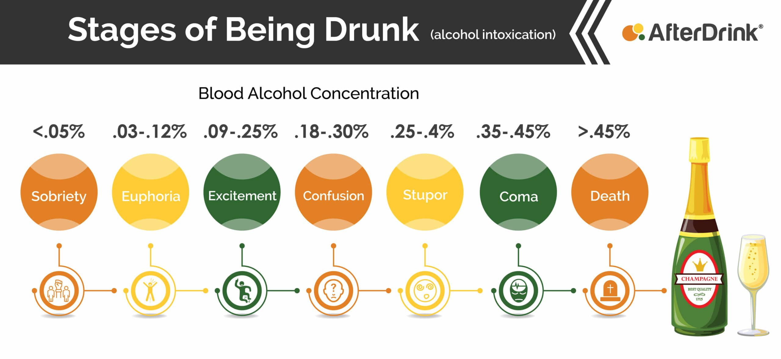 stages of being drunk infographic