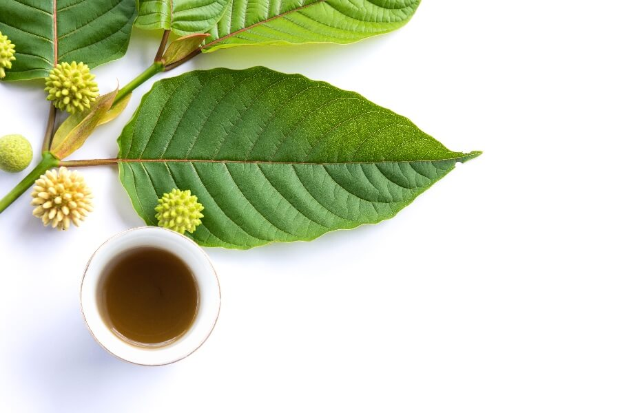 Kratom and Alcohol: Uses, Safety and Dangers