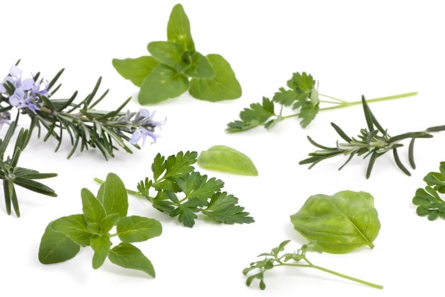 herbs for hangover